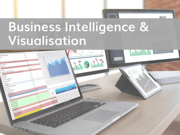 Business Intelligence & Visualisation